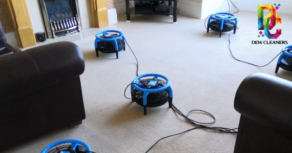 dew_cleaners_carpet_cleaning_speed_drying_